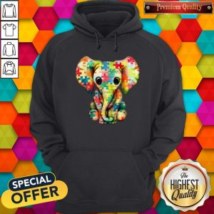 Premium Elephant Autism World Autism Awareness Day Gift Hoodie