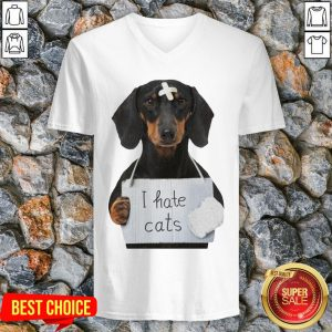 Cute Dachshund Dog I Hate Cats V Neck