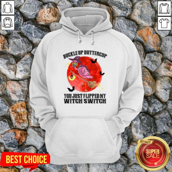 Flamingo Buckle Up Buttercup Witch Switch Halloween Hoodie