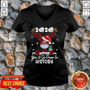 Perfect Christmas 2020 You'll Go Down In History V-neck