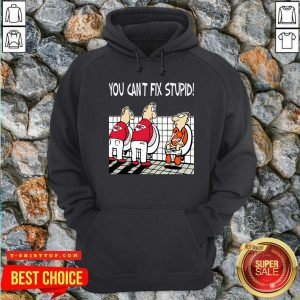 You Can't Fix Stupid Funny Kansas City Chiefs NFL Hoodie
